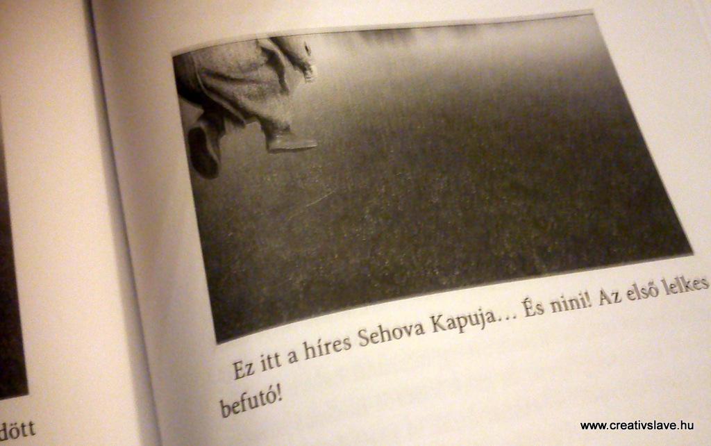 """Képaláírásos """"humor"""" Erdős Virág novelláskötetében."""