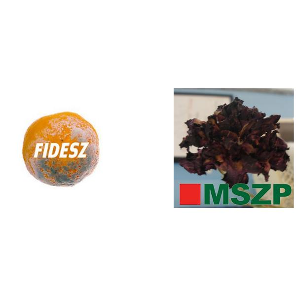 Rothadó pártok: Fidesz és MSZP
